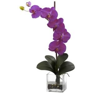 Giant Phal Orchid w/Vase Arrangement