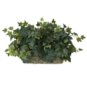 Ivy Ledge Plant (Set on Foam) Silk Plant