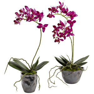 Mini Phal w/Metallic Vase (Set of 2)