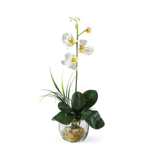 Mini Phalaenopsis Liquid Illusion Silk Orchid Arrangement