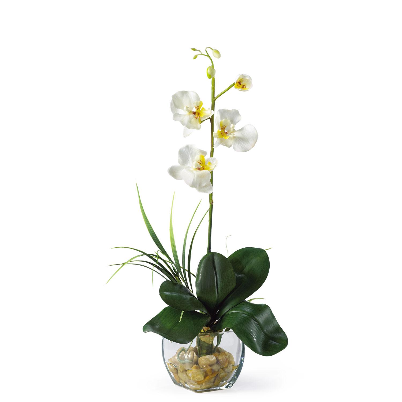 Mini Phalaenopsis Liquid Illusion Silk Orchid Arrangement Silk