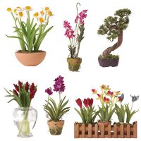 Miniature Arrangements Assortment 1