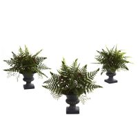 Mixed Fern Bush w/Urn (Set of 3)
