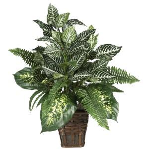 Mixed Greens Zebra w/Wicker Silk Plant