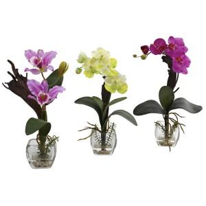 Mixed Orchid w/Cube Arrangements (Set of 3)