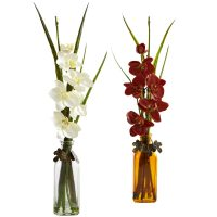 Phalaenopsis w/Colored Jar (Set of 2)