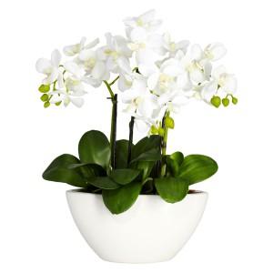 Phalaenopsis w/White Vase Silk Flower Arrangement