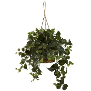 Philo Hanging Basket