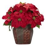 Poinsettia w/Decorative Vase Silk Arrangement