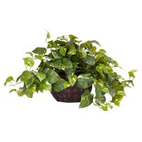 Pothos w/Decorative Planter