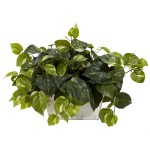 Pothos w/White Wash Planter Silk Plant