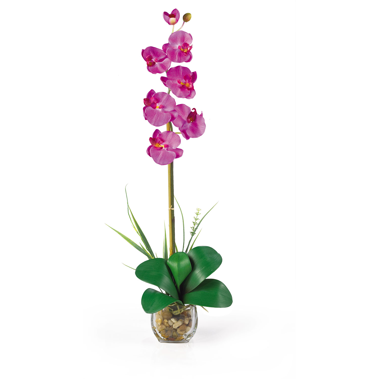Single Phalaenopsis Liquid Illusion Silk Flower Arrangement Silk