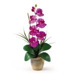 Single Stem Phalaenopsis Orchid Silk Flower Arrangement