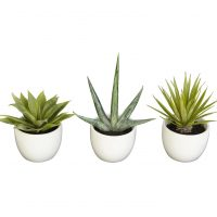 Southwest Collection (Set of 3)