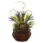 Succulent Garden w/Decorative Planter