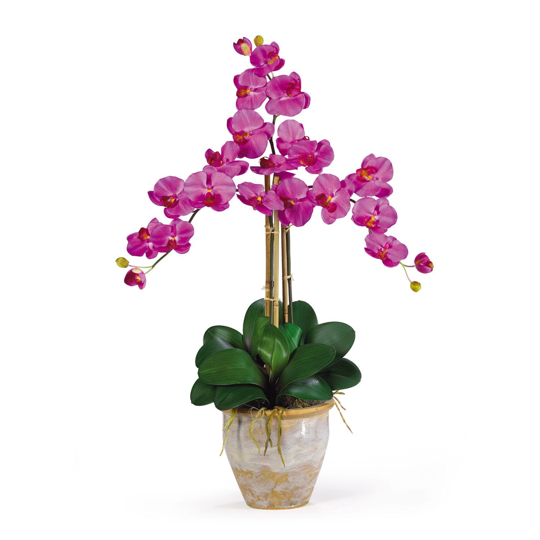 Triple Stem Phalaenopsis Silk Orchid Flower Arrangement Silk
