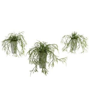 Wild Grass w/White Vase (Set of 3)